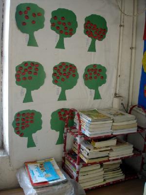 洪合镇中心小学开展班级图书角评比活动